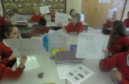 5V Learn Mandarin