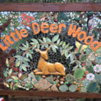 Little Deer Wood Residential
